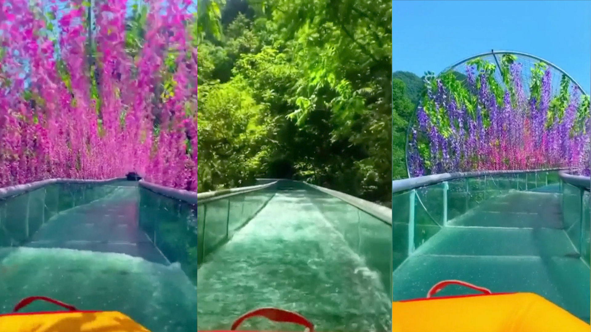 Glass Water Slide Allows Tourists To Float Under Hanging
